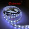 LED نواری 12V PW 5050