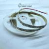 LED نواری 12ولت IP20 2835 سفید معمولی 120LED