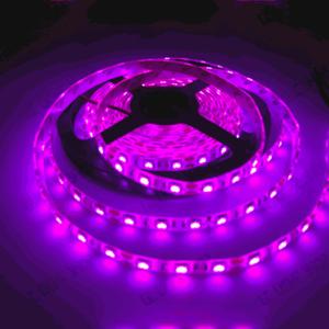 led navari 5050 12v ip65 pink 60 led 300x300 - LED  نواری 12ولت IP65 5050 صورتی